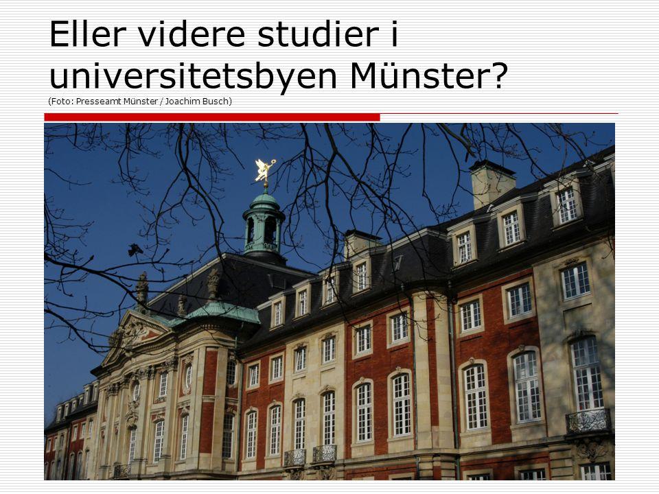 Eller videre studier i universitetsbyen Münster