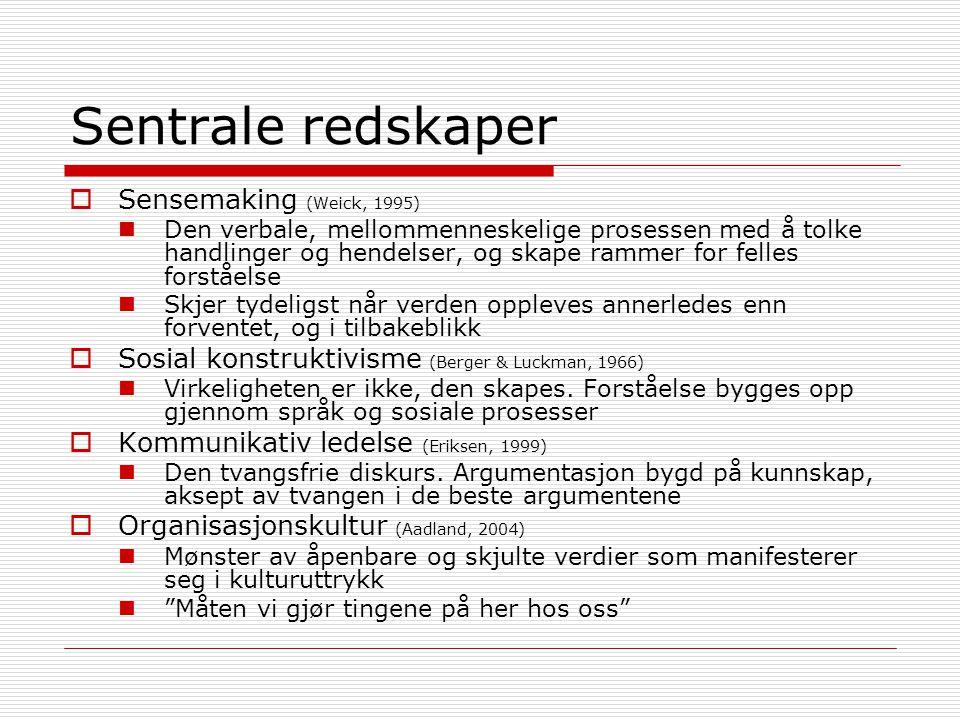Sentrale redskaper Sensemaking (Weick, 1995)
