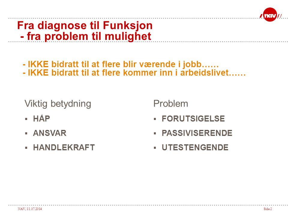 Fra diagnose til Funksjon - fra problem til mulighet