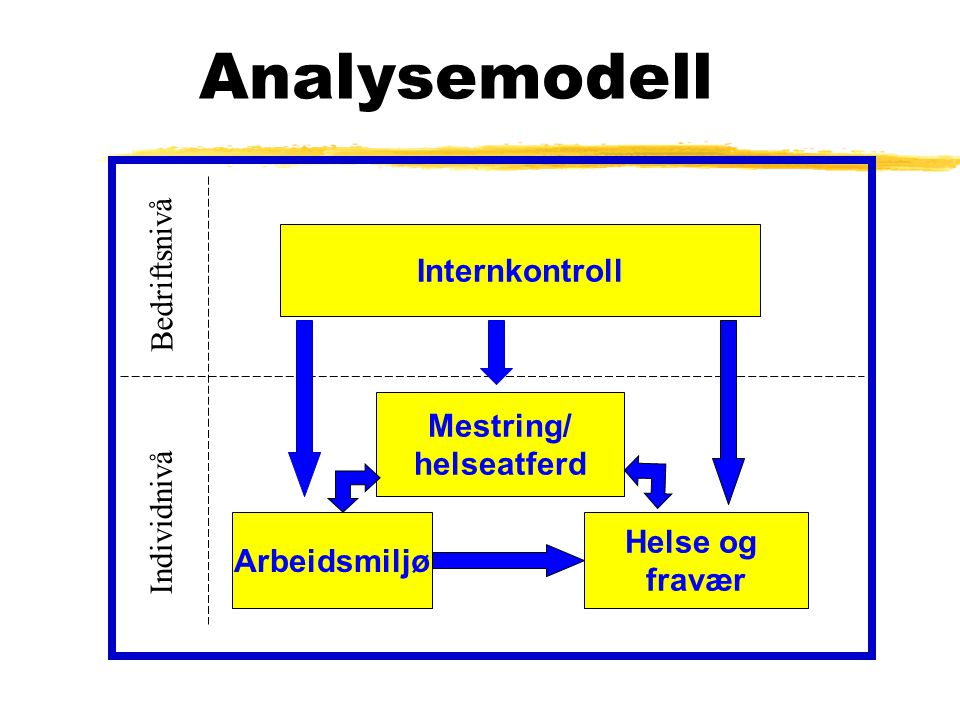 Analysemodell Bedriftsnivå Internkontroll Mestring/ helseatferd