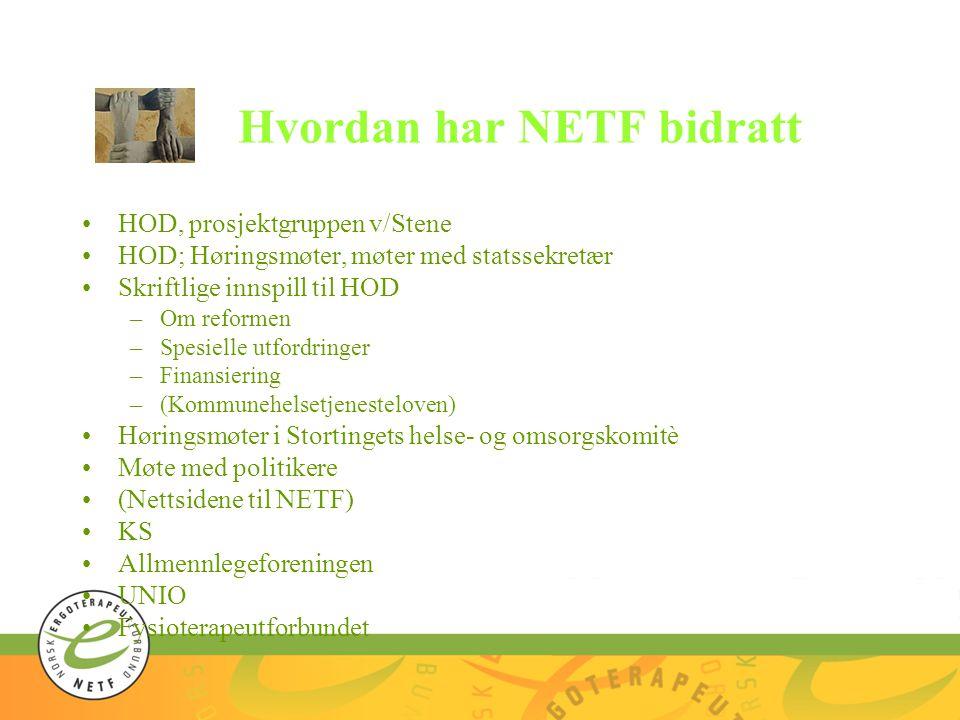 Hvordan har NETF bidratt