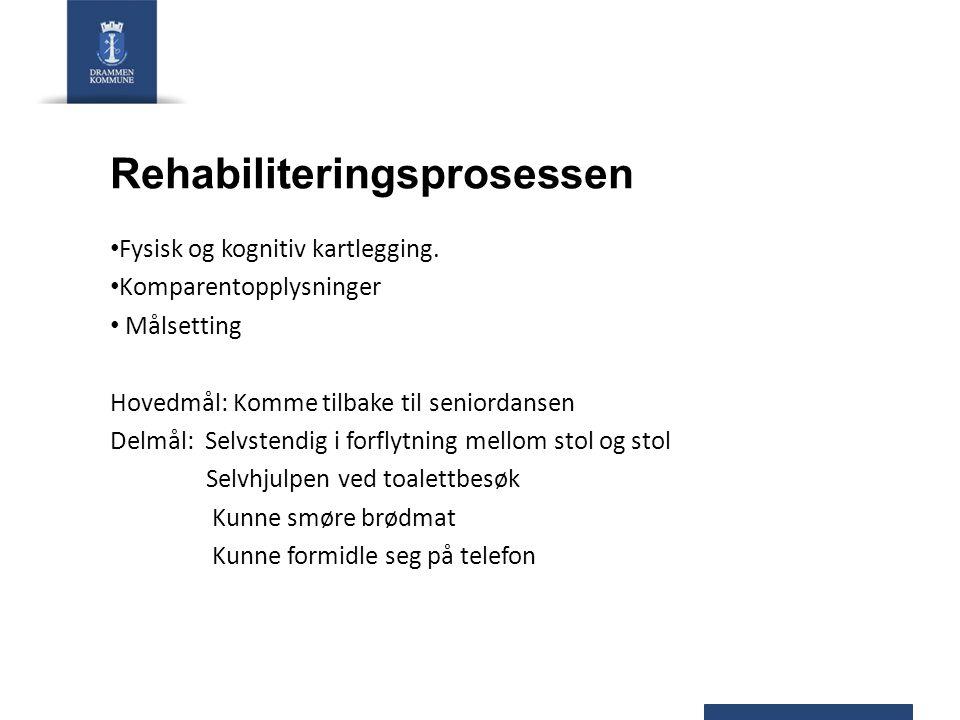 Rehabiliteringsprosessen