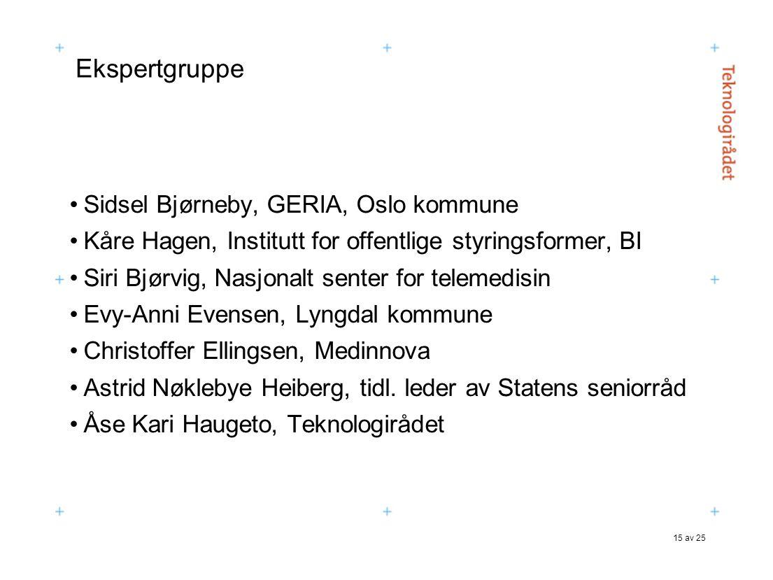 Ekspertgruppe Sidsel Bjørneby, GERIA, Oslo kommune