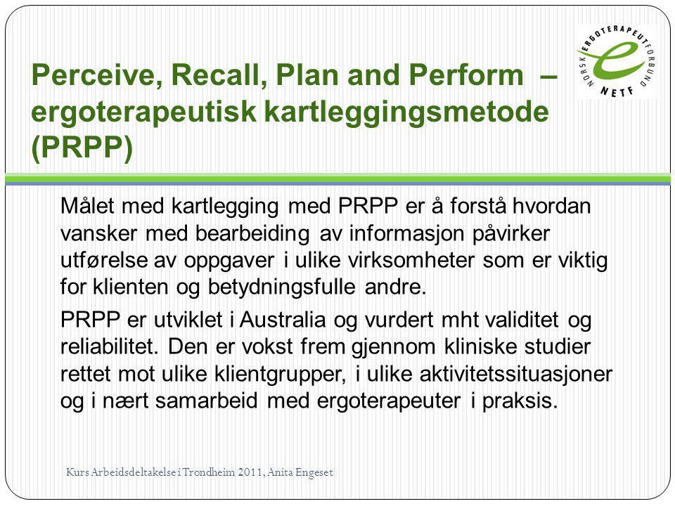 Perceive, Recall, Plan and Perform – ergoterapeutisk kartleggingsmetode (PRPP)