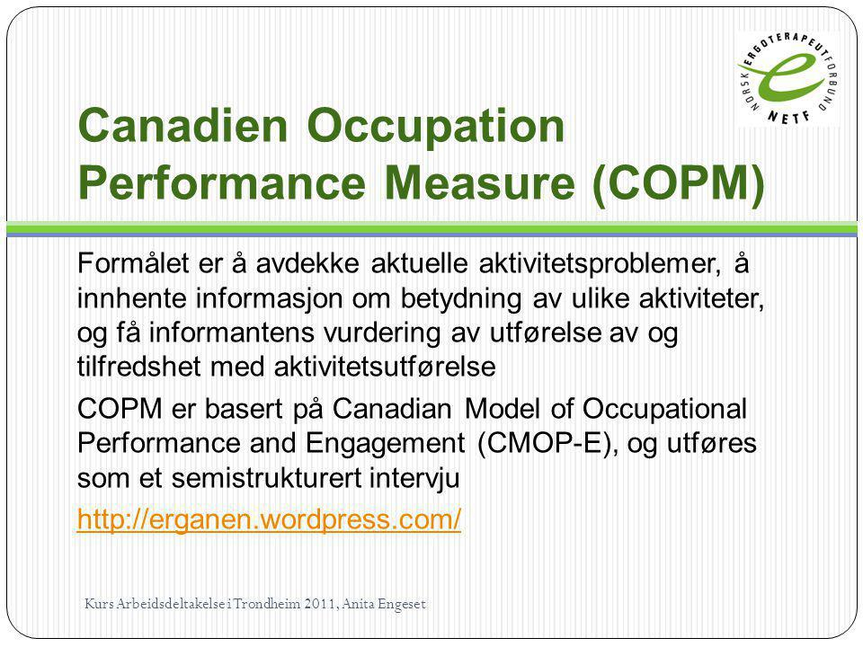 Canadien Occupation Performance Measure (COPM)
