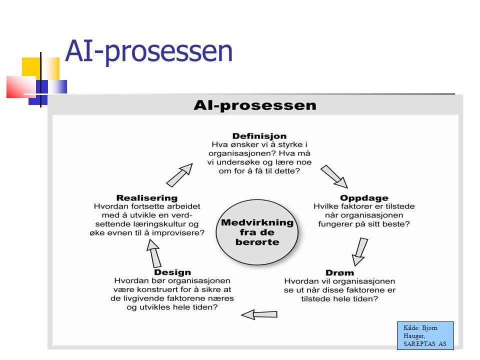 18.10.09 AI-prosessen Kilde: Bjørn Hauger, SAREPTAS AS Ann Kristin Løe