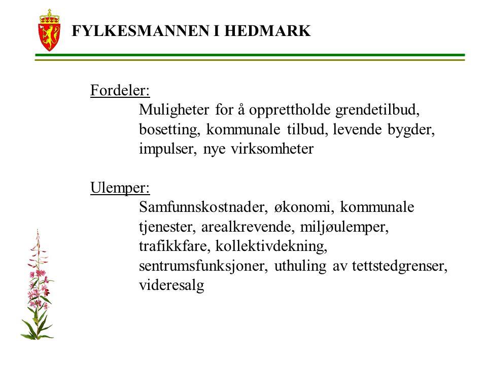 FYLKESMANNEN I HEDMARK