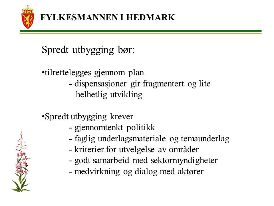 Spredt utbygging bør: FYLKESMANNEN I HEDMARK