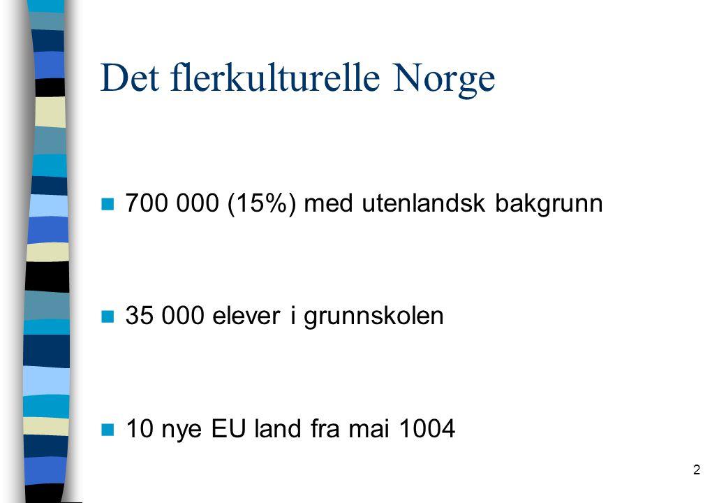Det flerkulturelle Norge