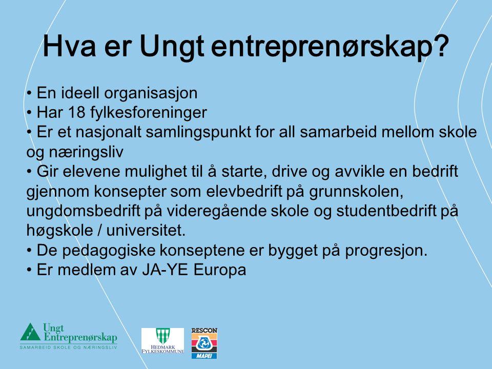 Hva er Ungt entreprenørskap