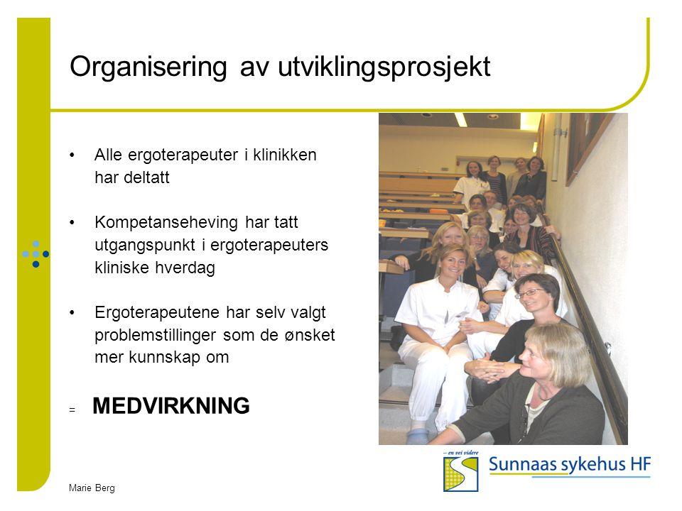 Organisering av utviklingsprosjekt