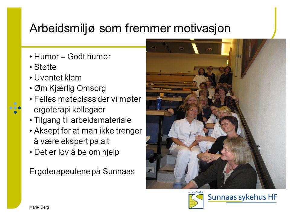 Arbeidsmiljø som fremmer motivasjon