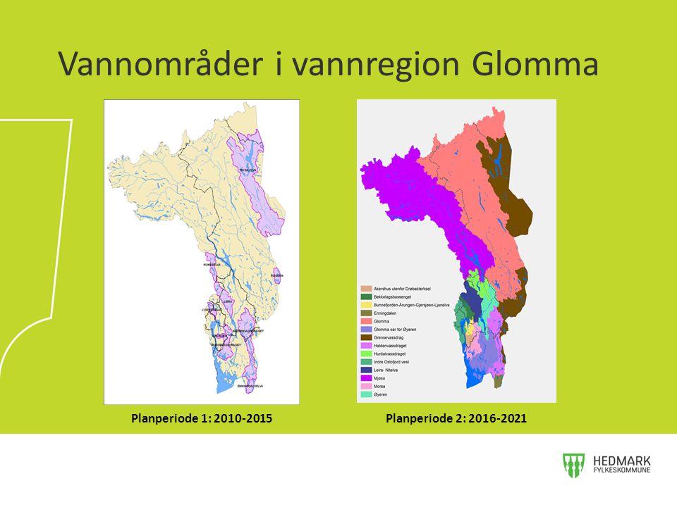 Vannområder i vannregion Glomma