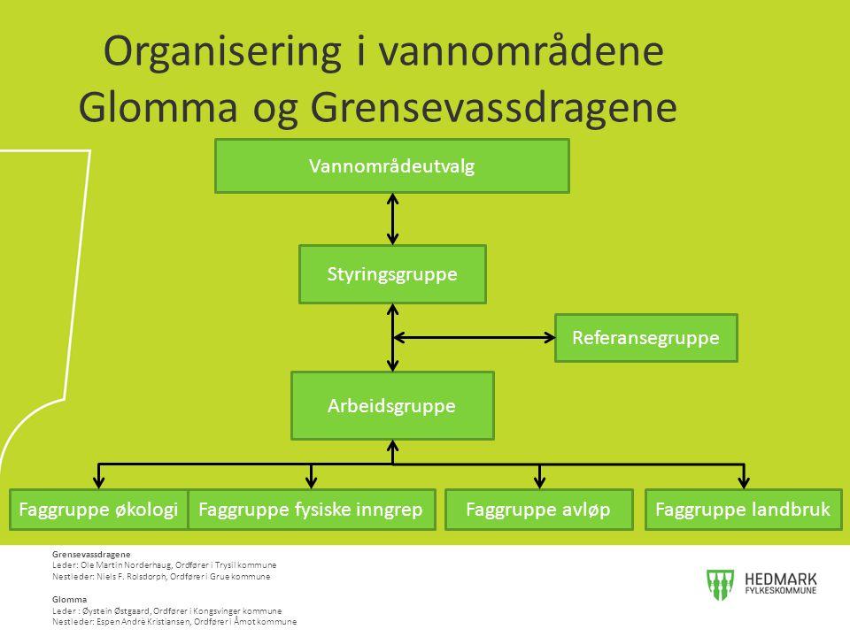 Organisering i vannområdene Glomma og Grensevassdragene