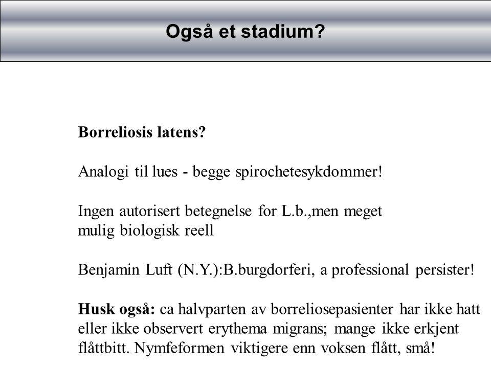 Også et stadium Borreliosis latens