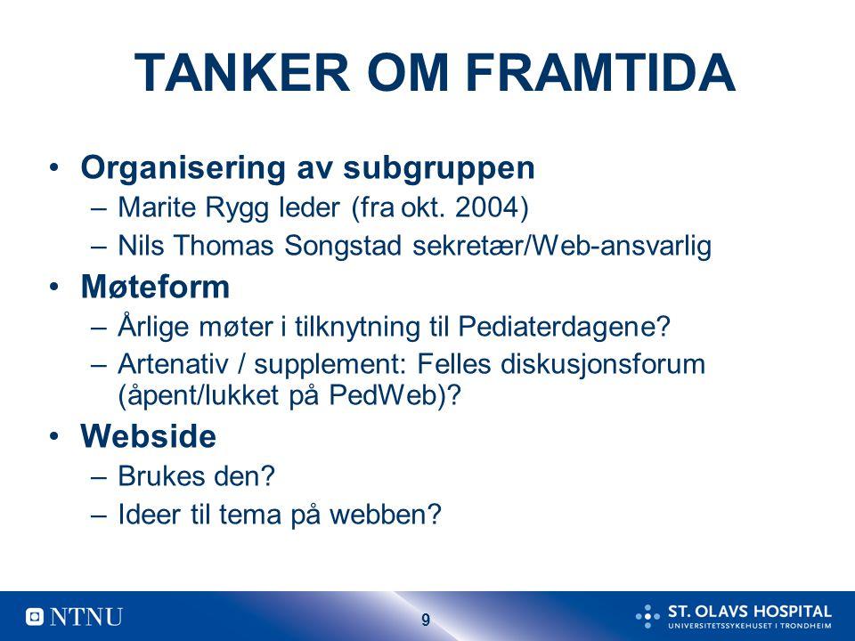 TANKER OM FRAMTIDA Organisering av subgruppen Møteform Webside