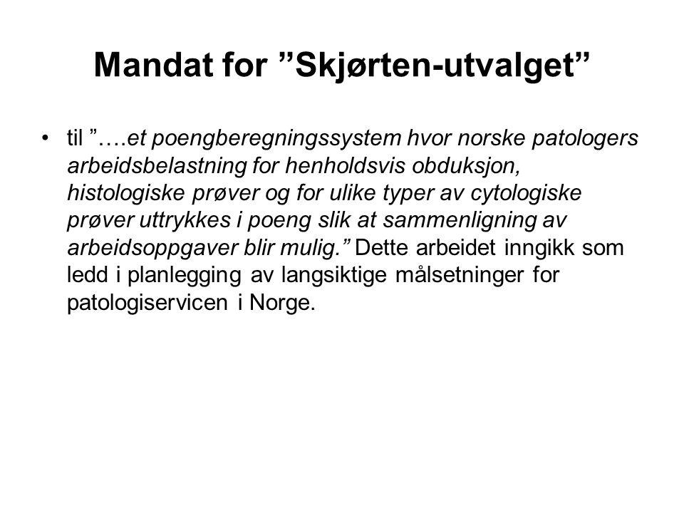Mandat for Skjørten-utvalget
