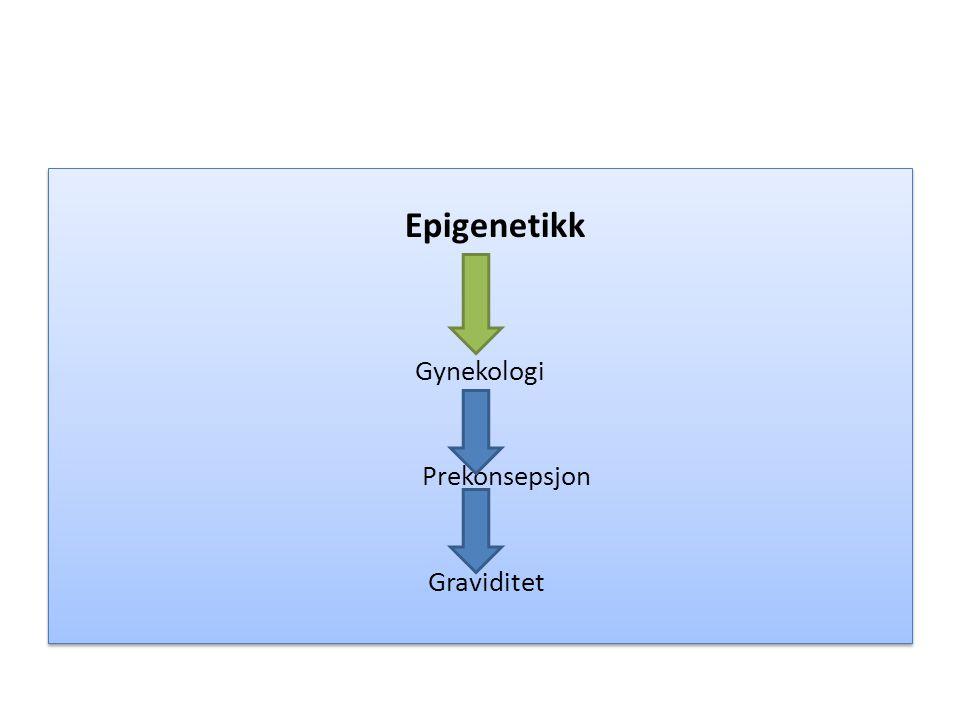 Epigenetikk Gynekologi Prekonsepsjon Graviditet