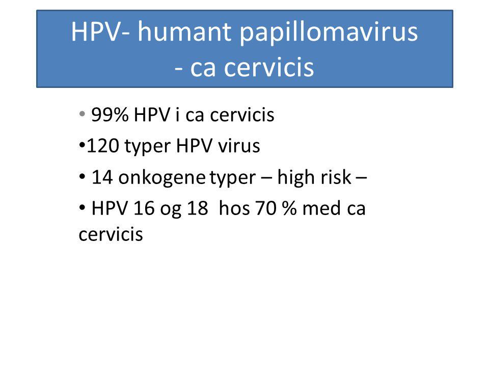 HPV- humant papillomavirus - ca cervicis