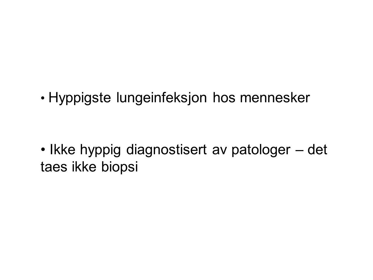 Ikke hyppig diagnostisert av patologer – det taes ikke biopsi