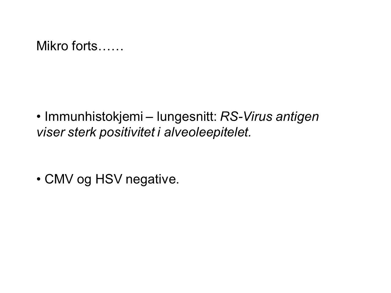 Mikro forts…… Immunhistokjemi – lungesnitt: RS-Virus antigen viser sterk positivitet i alveoleepitelet.