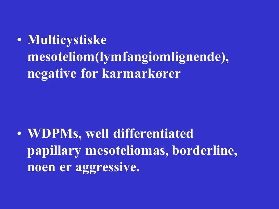 Multicystiske mesoteliom(lymfangiomlignende), negative for karmarkører