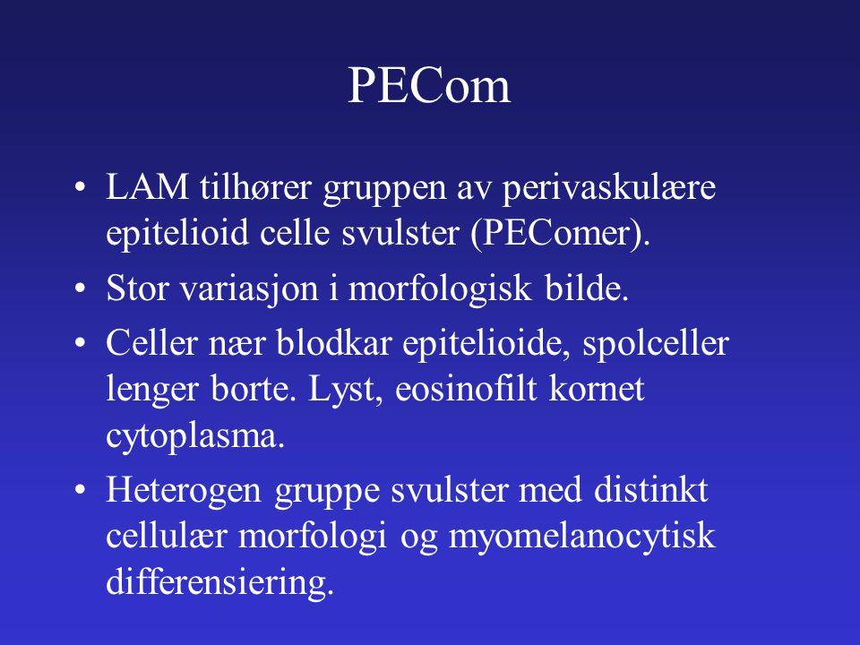 PECom LAM tilhører gruppen av perivaskulære epitelioid celle svulster (PEComer). Stor variasjon i morfologisk bilde.
