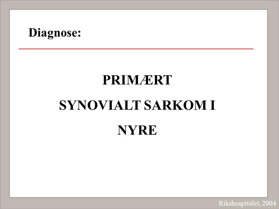 PRIMÆRT SYNOVIALT SARKOM I NYRE