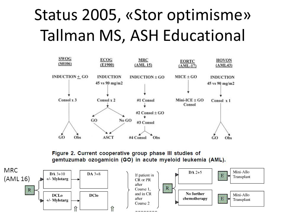Status 2005, «Stor optimisme» Tallman MS, ASH Educational