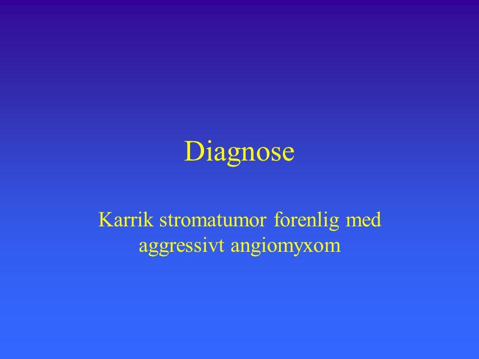 Karrik stromatumor forenlig med aggressivt angiomyxom