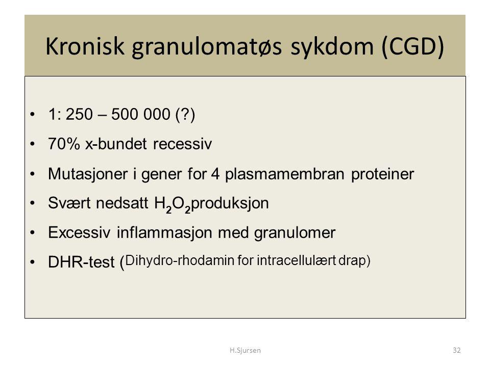 Kronisk granulomatøs sykdom (CGD)