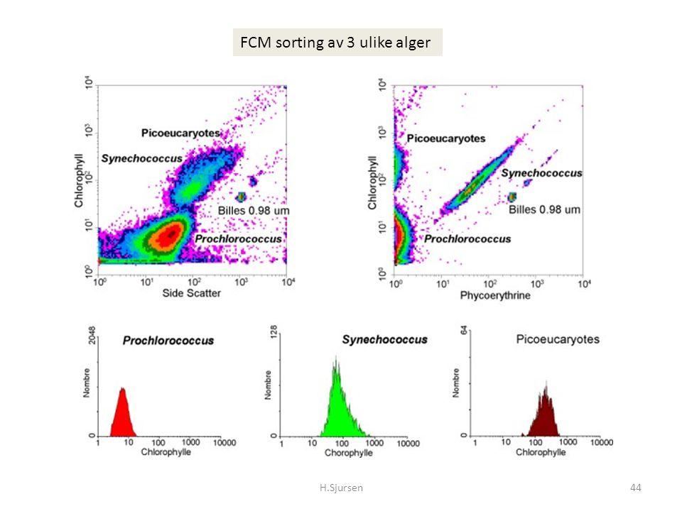 FCM sorting av 3 ulike alger