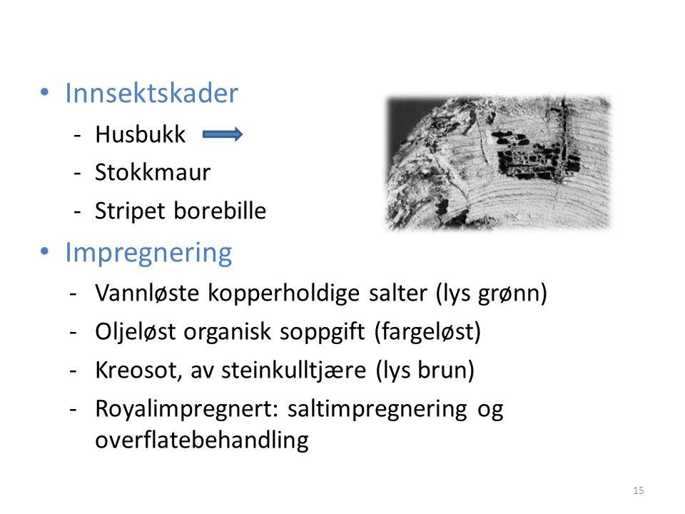 Innsektskader Impregnering - Husbukk - Stokkmaur - Stripet borebille