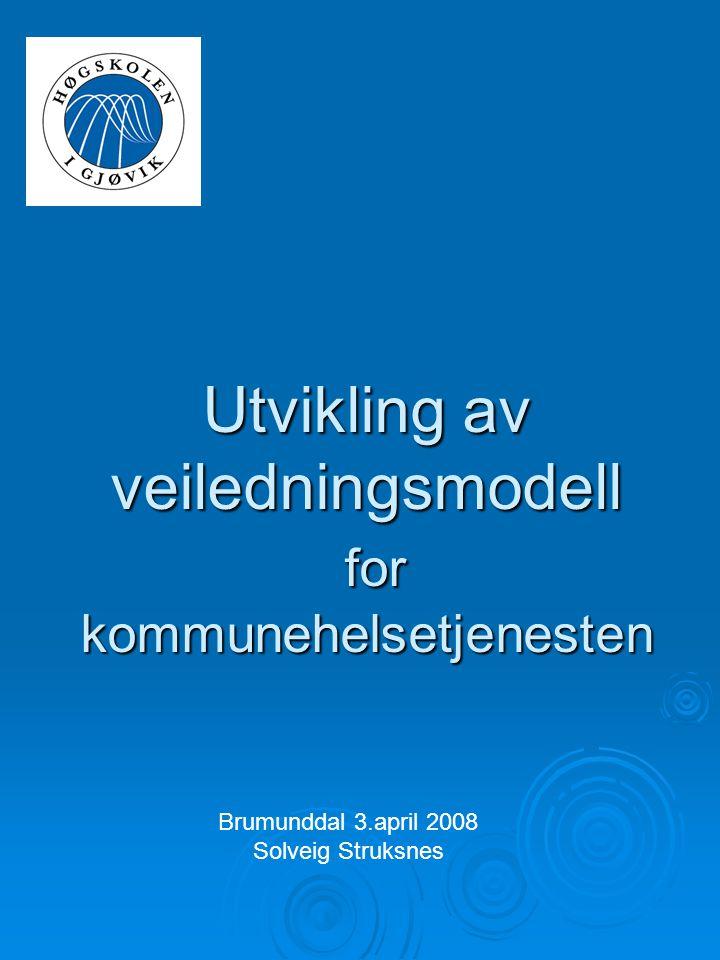 Utvikling av veiledningsmodell for kommunehelsetjenesten