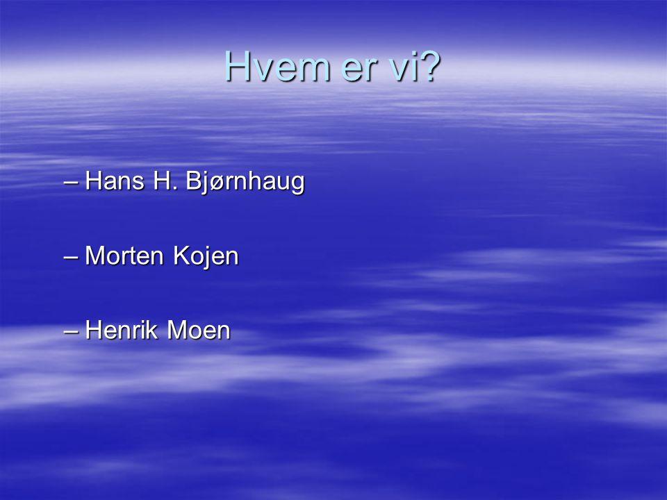 Hvem er vi Hans H. Bjørnhaug Morten Kojen Henrik Moen
