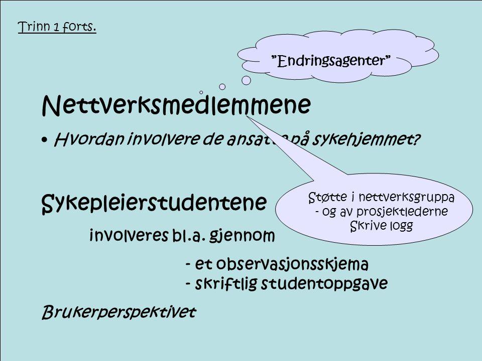 Nettverksmedlemmene Sykepleierstudentene