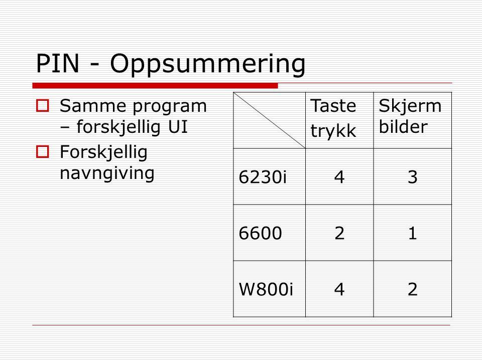 PIN - Oppsummering Samme program – forskjellig UI