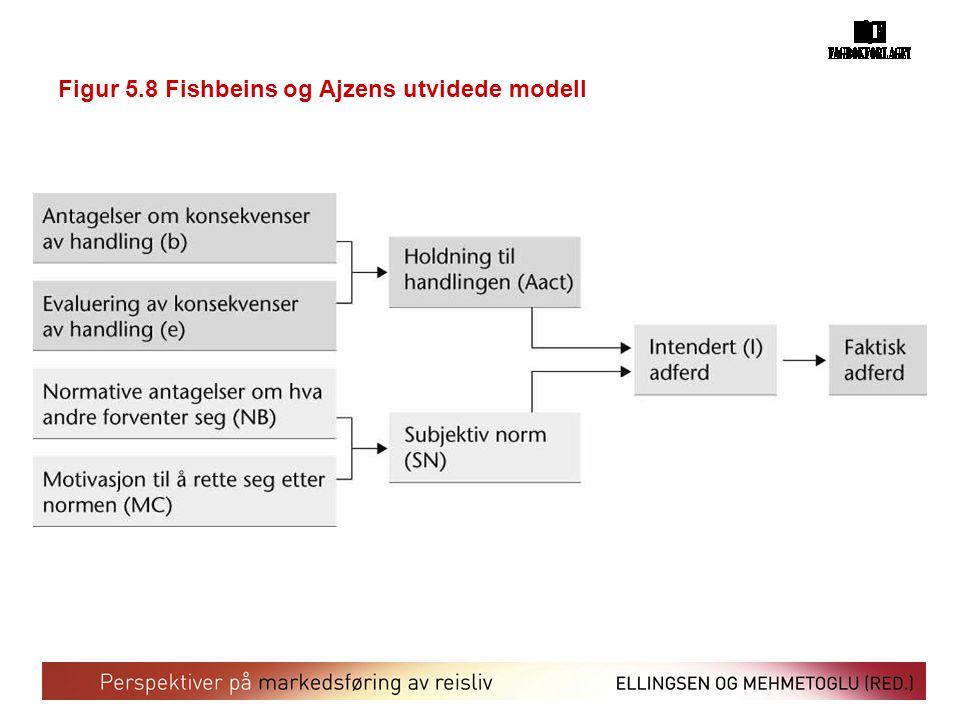 Figur 5.8 Fishbeins og Ajzens utvidede modell