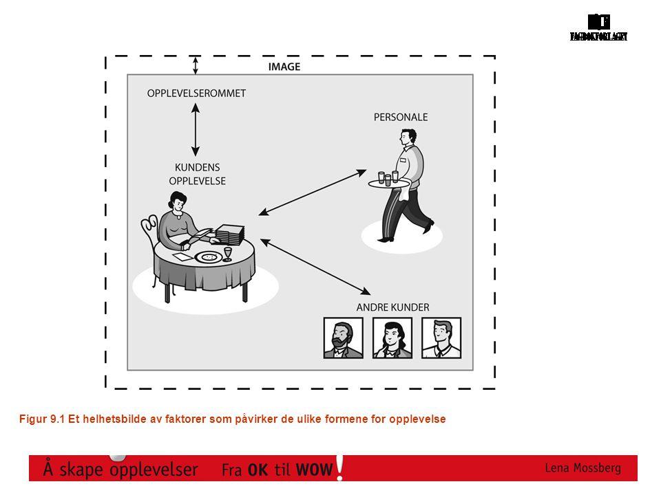 Figur 9.1 Et helhetsbilde av faktorer som påvirker de ulike formene for opplevelse