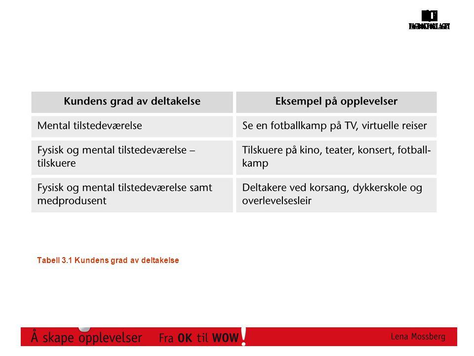 Tabell 3.1 Kundens grad av deltakelse