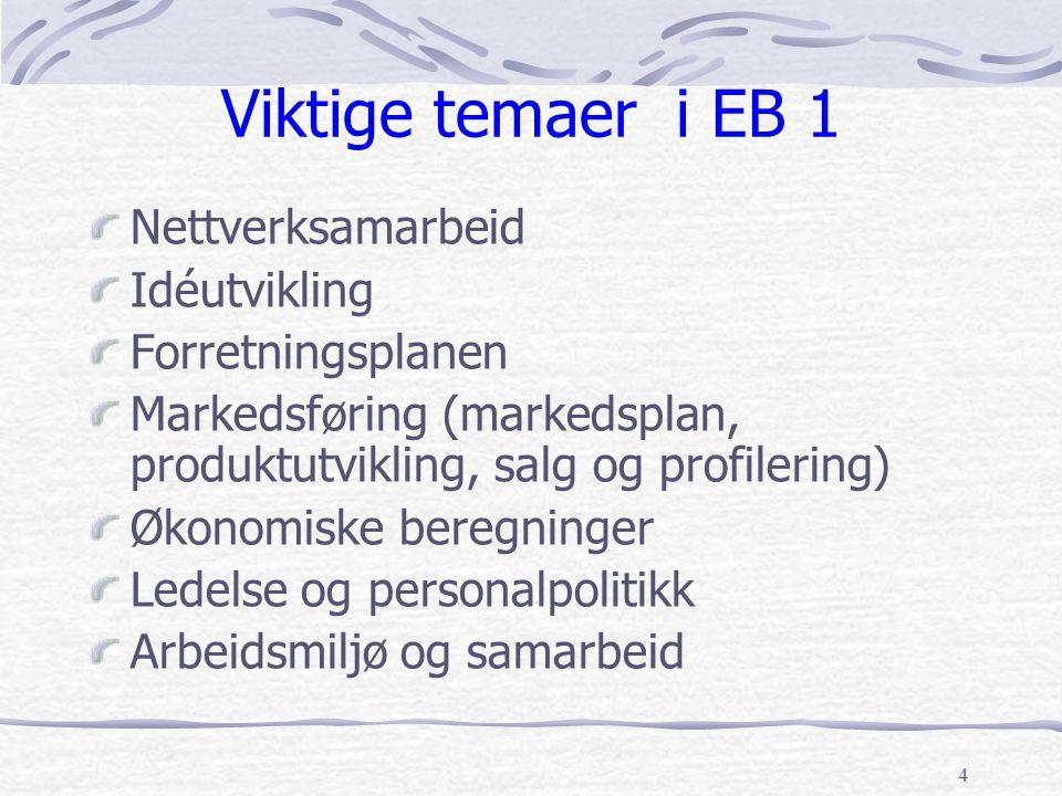 Viktige temaer i EB 1 Nettverksamarbeid Idéutvikling Forretningsplanen