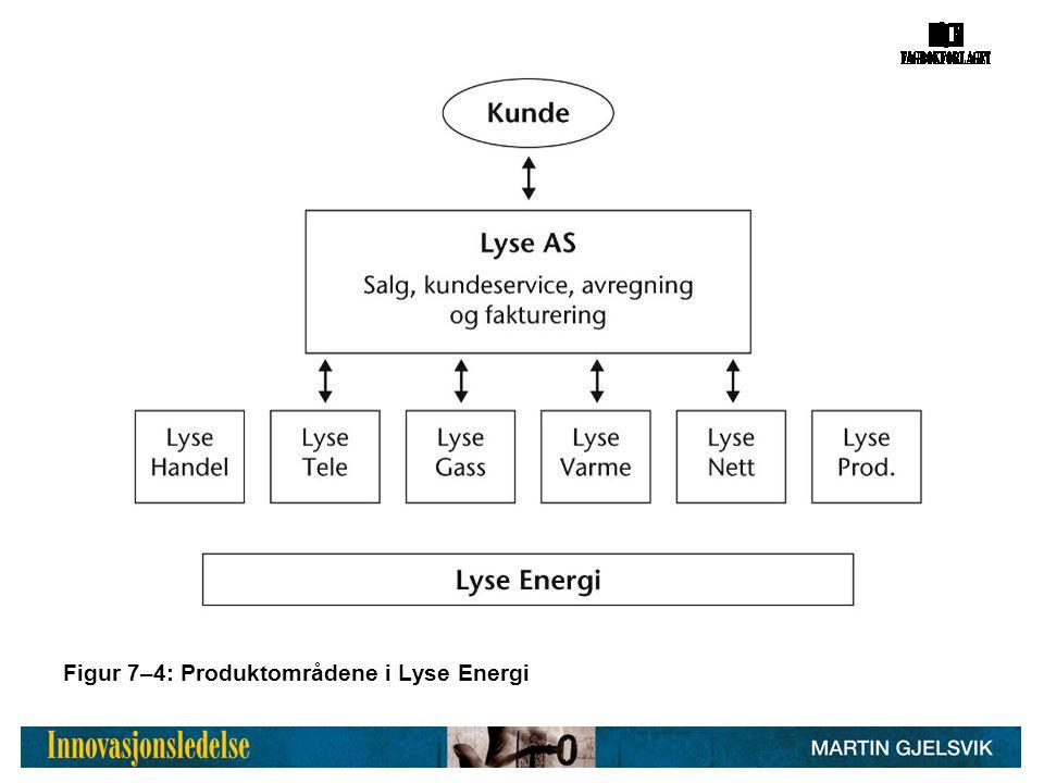 Figur 7–4: Produktområdene i Lyse Energi