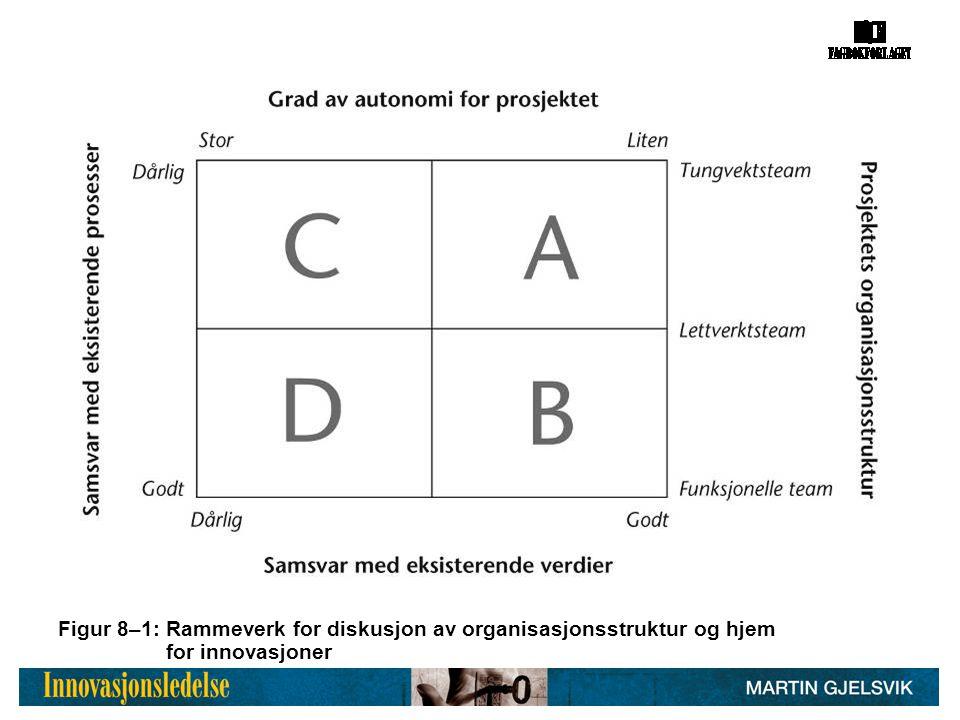 Figur 8–1: Rammeverk for diskusjon av organisasjonsstruktur og hjem