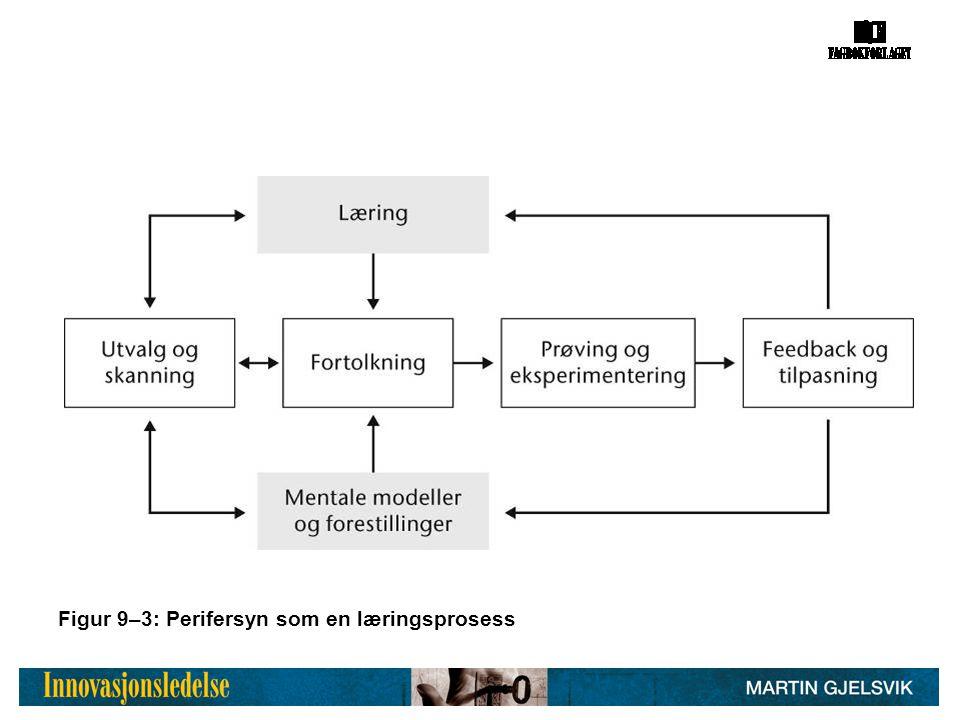 Figur 9–3: Perifersyn som en læringsprosess