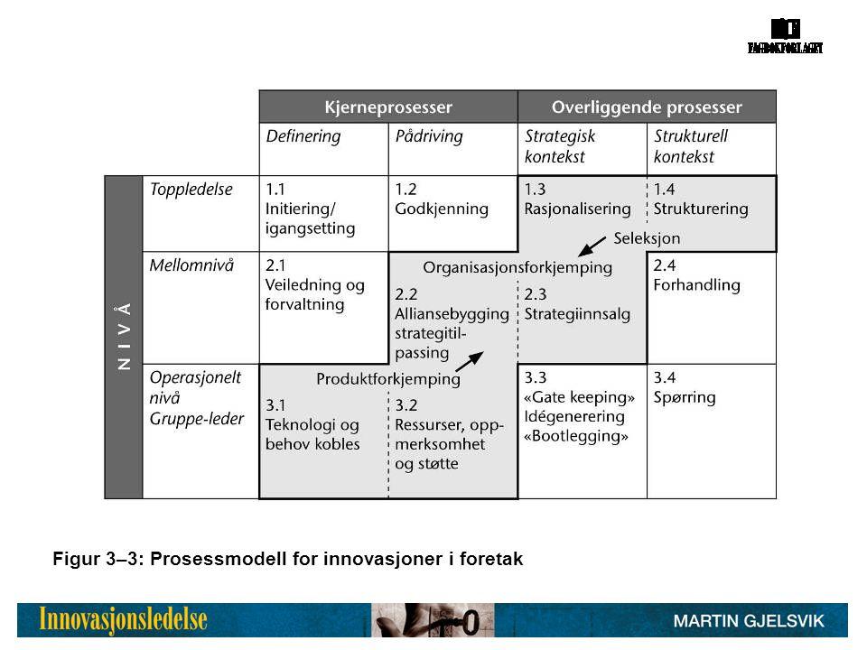 Figur 3–3: Prosessmodell for innovasjoner i foretak