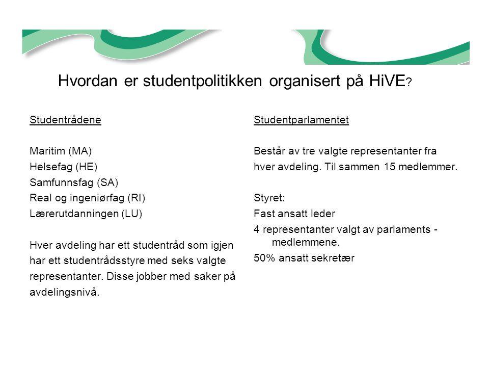 Hvordan er studentpolitikken organisert på HiVE