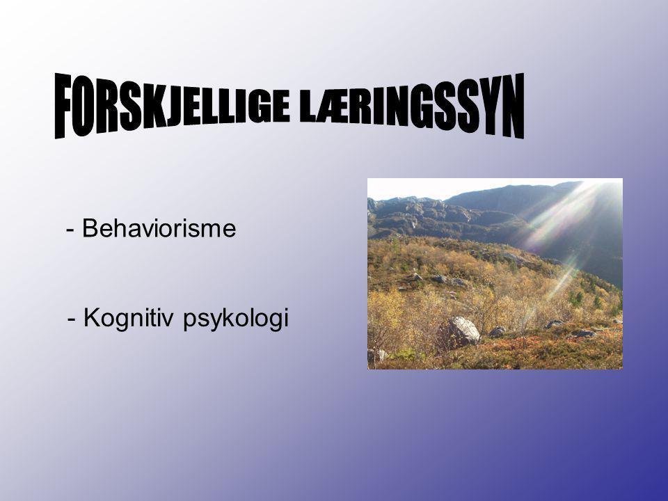 FORSKJELLIGE LÆRINGSSYN