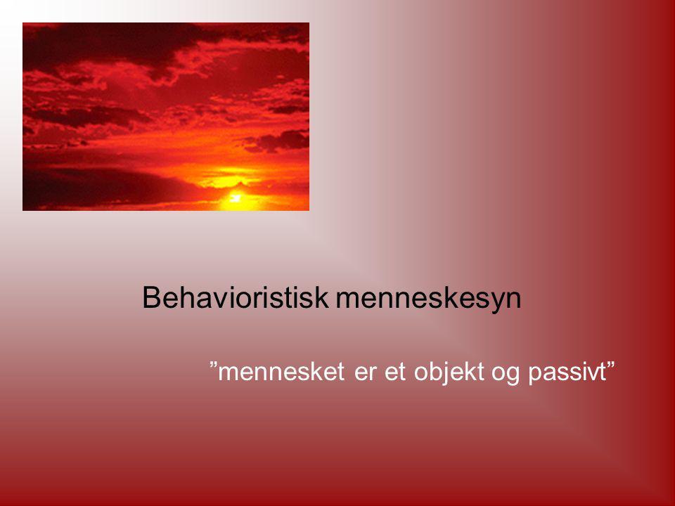 Behavioristisk menneskesyn