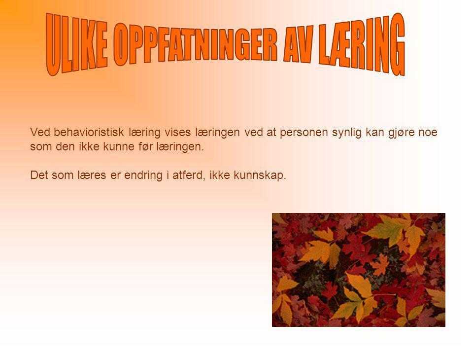 ULIKE OPPFATNINGER AV LÆRING
