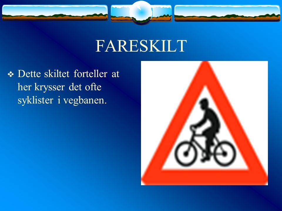 FARESKILT Dette skiltet forteller at her krysser det ofte syklister i vegbanen.